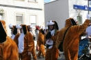 karnevalszug2013raeren_46_20130302_1174698792.jpg