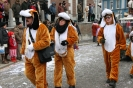 Karnevalszug2013Eupen 38