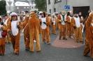 Karnevalszug2013Kettenis 19