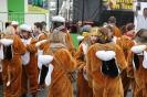 Karnevalszug2013Kettenis 5