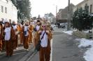 Karnevalszug2013Raeren 14