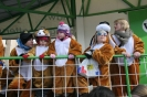 Karnevalszug2013Raeren 16