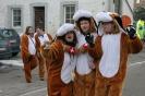 Karnevalszug2013Raeren 44