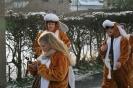 Karnevalszug2013Raeren 5