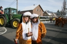 Karnevalszug2013Raeren 64