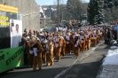 Karnevalszug2013Raeren 7
