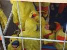 Karnevalszüge Eupen - Kettenis 2008 :: Veilchendienstagszug2008 9